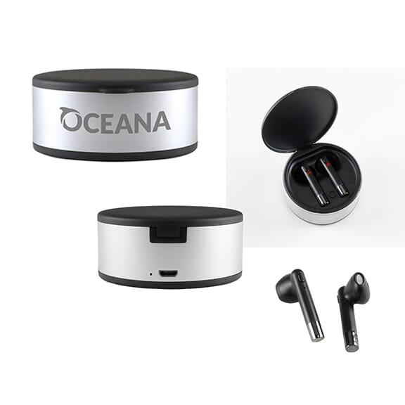 Wireless earbuds with light-up charging case